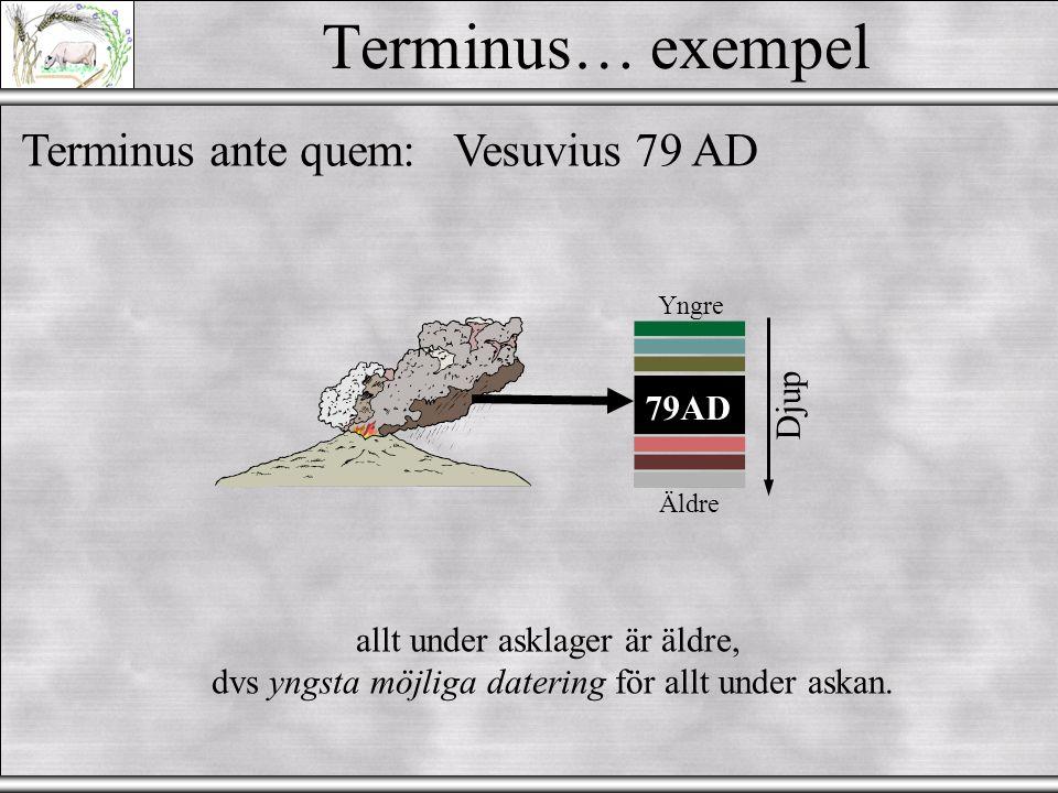 Terminus… exempel Terminus ante quem: Vesuvius 79 AD Djup 79AD
