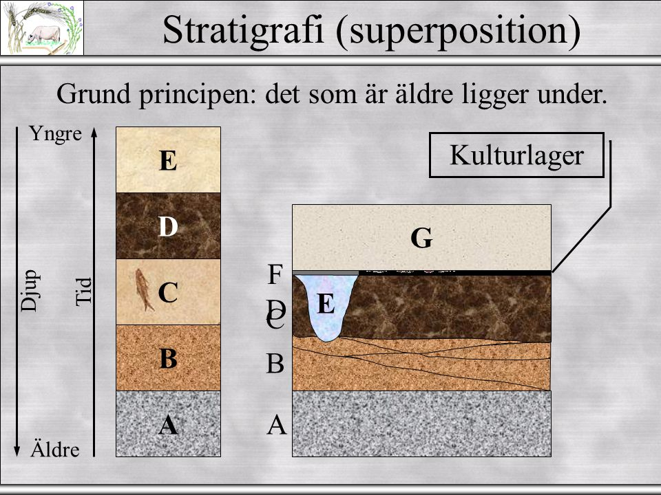Stratigrafi (superposition)