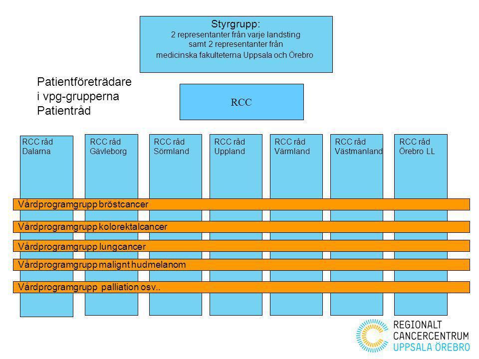 Patientföreträdare i vpg-grupperna Patientråd Styrgrupp: RCC