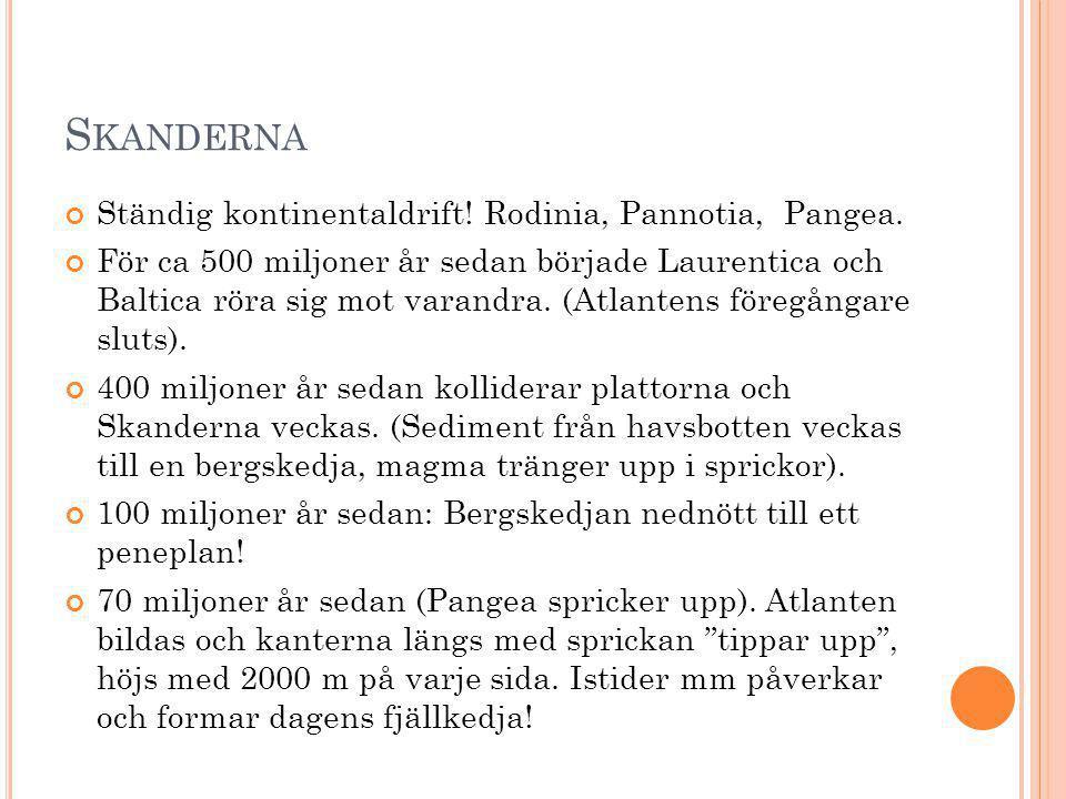 Skanderna Ständig kontinentaldrift! Rodinia, Pannotia, Pangea.