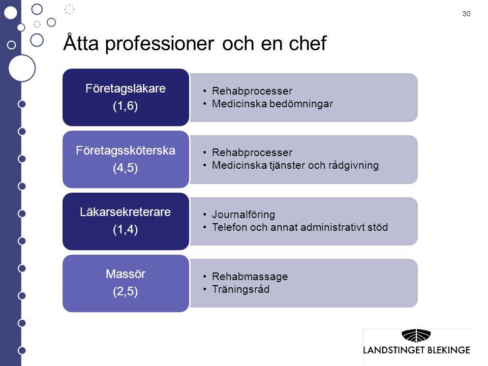 Åtta professioner och en chef