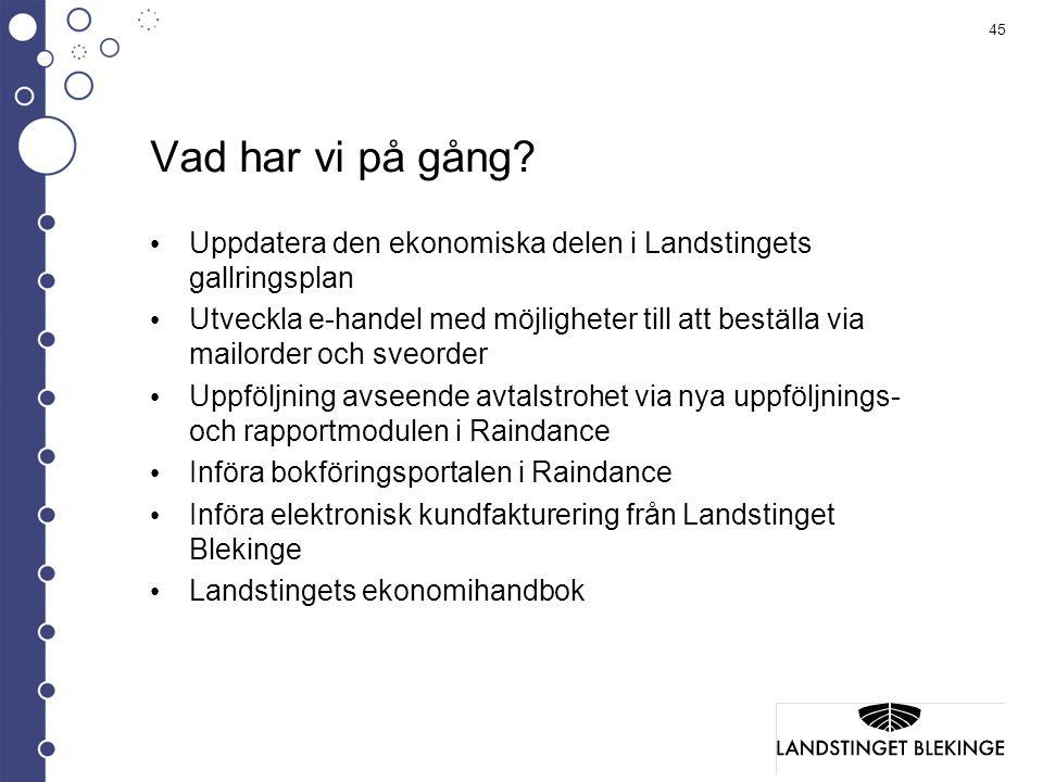 Vad har vi på gång Uppdatera den ekonomiska delen i Landstingets gallringsplan.