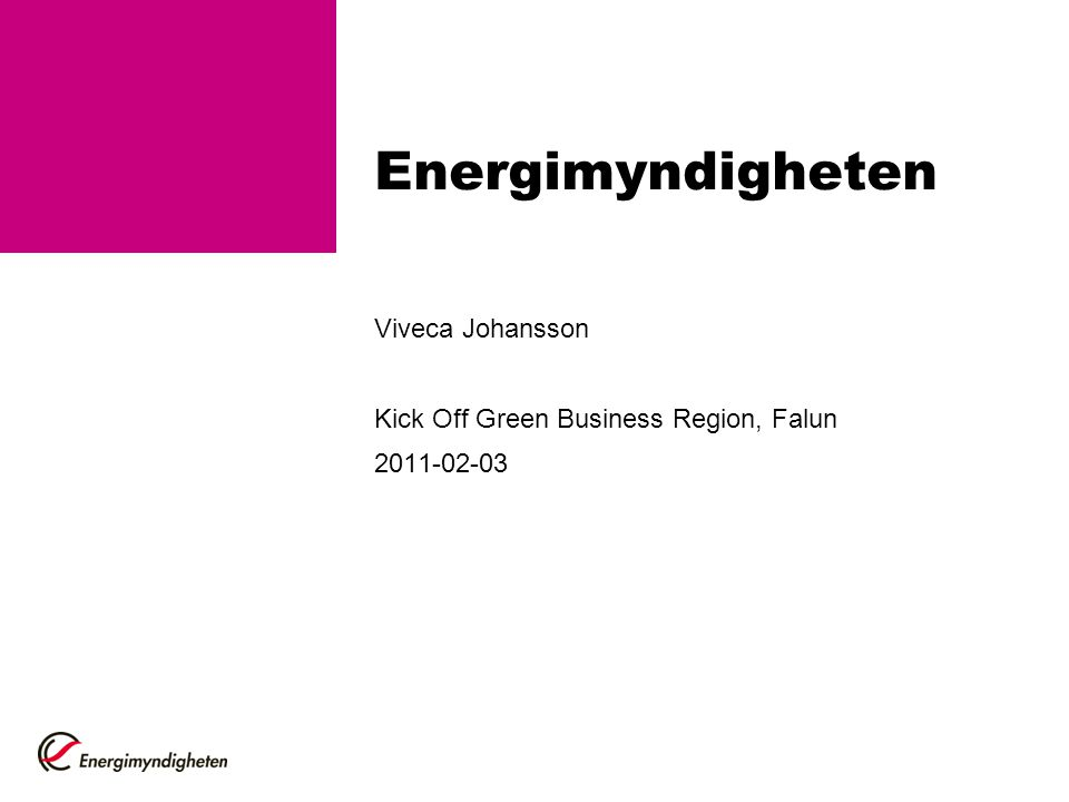 Viveca Johansson Kick Off Green Business Region, Falun 2011-02-03