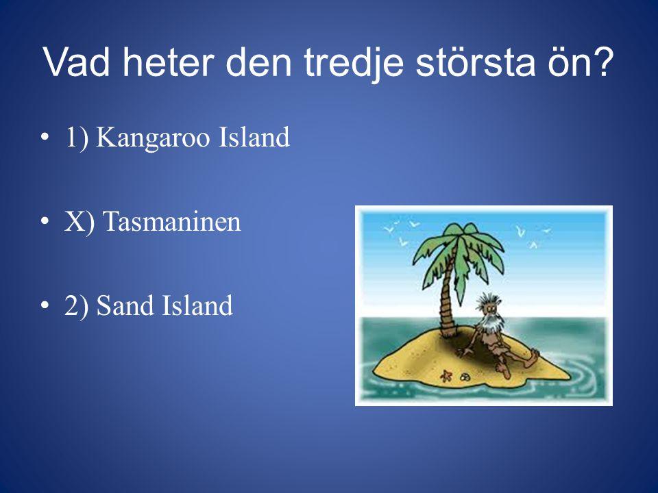 Vad heter den tredje största ön