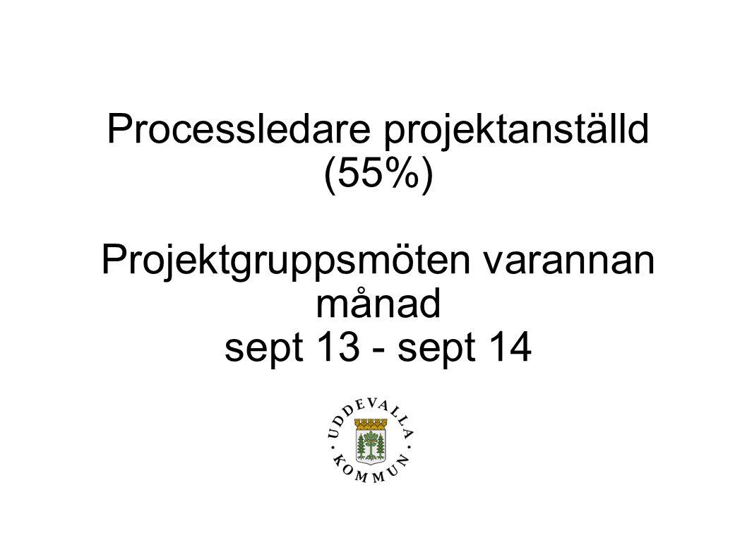 Processledare projektanställd (55%)