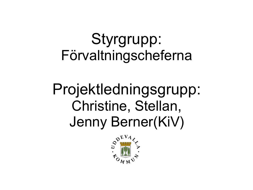 Projektledningsgrupp:
