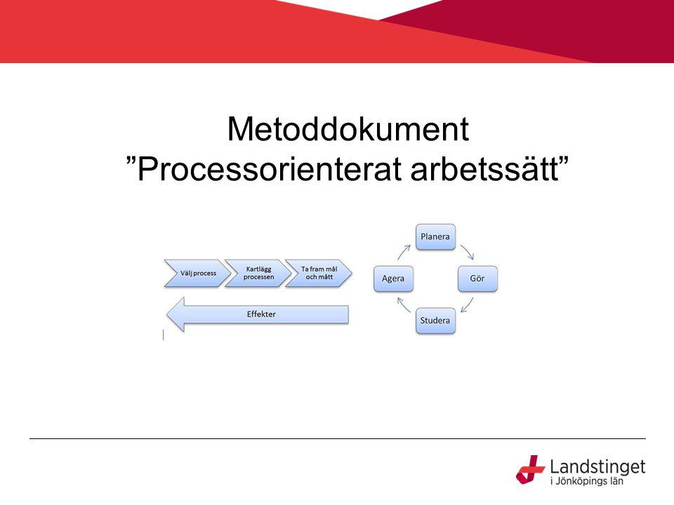 Metoddokument Processorienterat arbetssätt