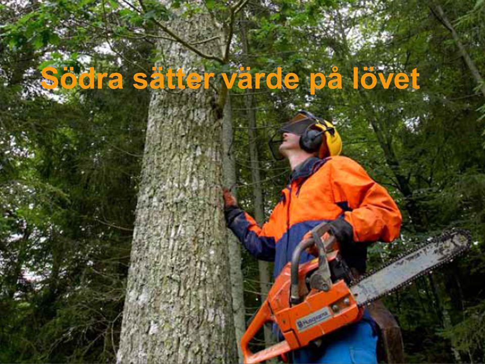 Södra sätter värde på lövet