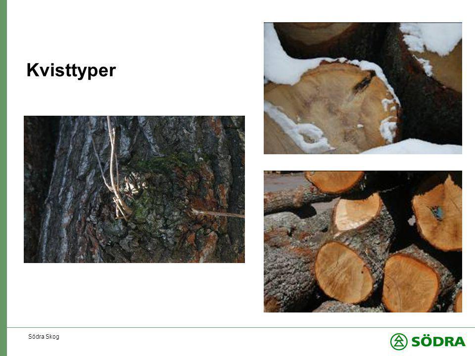 Kvisttyper Södra Skog