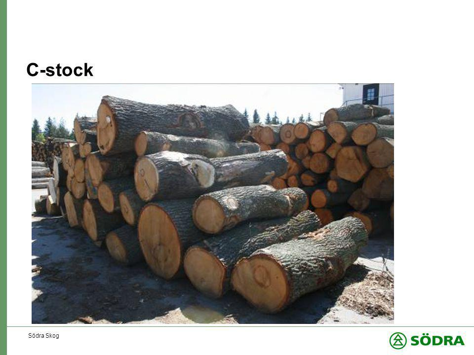 C-stock Södra Skog
