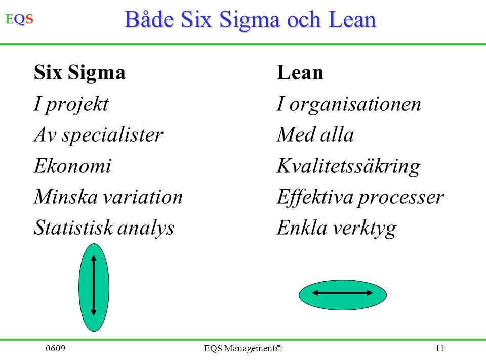 Både Six Sigma och Lean Six Sigma Lean I projekt I organisationen