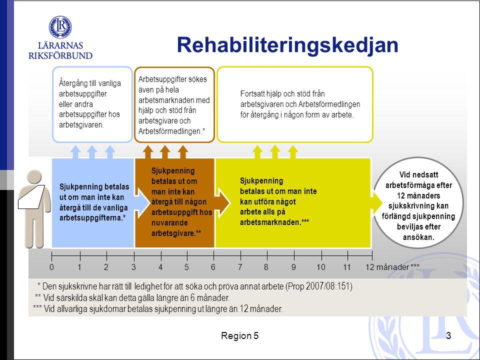 Rehabiliteringskedjan