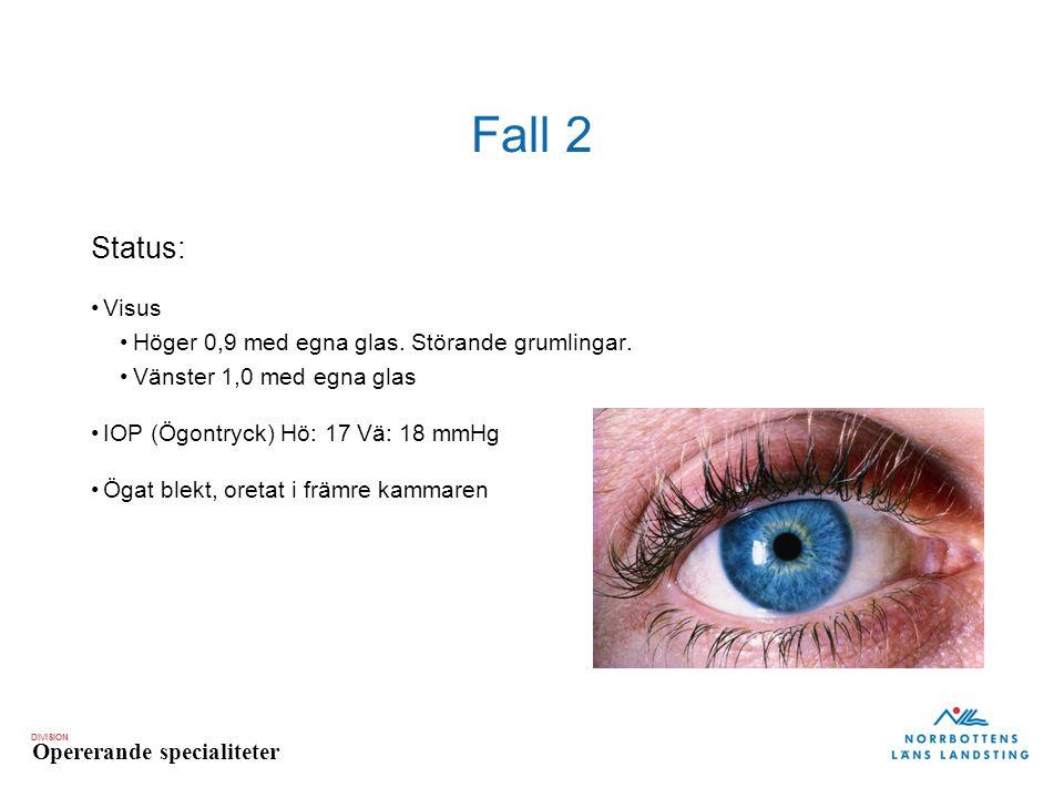 Fall 2 Status: Visus Höger 0,9 med egna glas. Störande grumlingar.