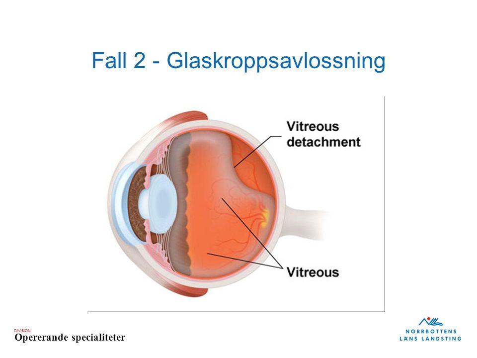 Fall 2 - Glaskroppsavlossning