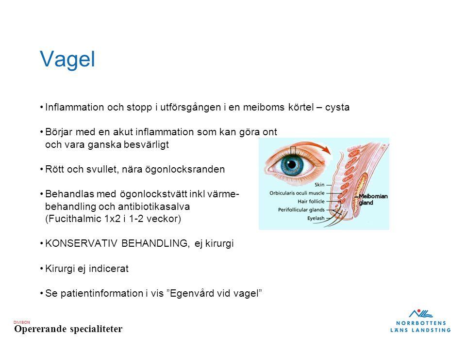 Vagel Inflammation och stopp i utförsgången i en meiboms körtel – cysta.