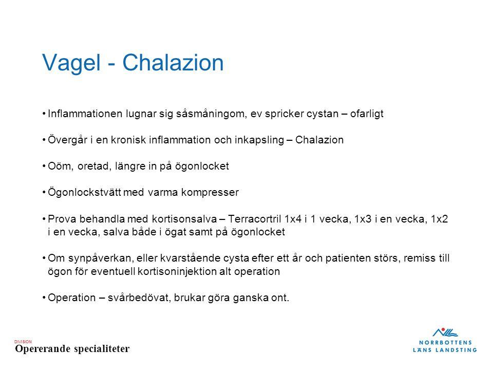 Vagel - Chalazion Inflammationen lugnar sig såsmåningom, ev spricker cystan – ofarligt. Övergår i en kronisk inflammation och inkapsling – Chalazion.