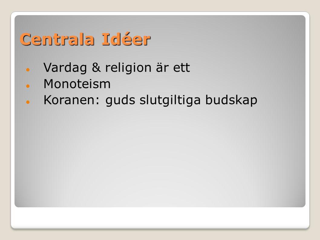 Centrala Idéer Vardag & religion är ett Monoteism