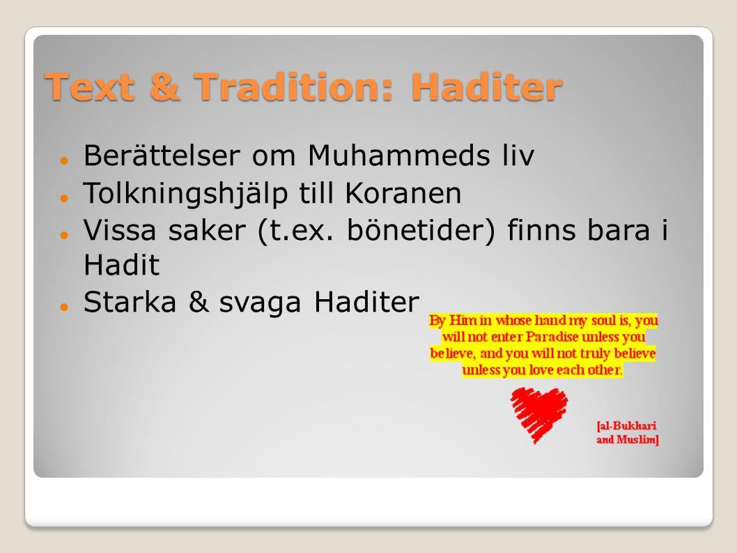Text & Tradition: Haditer