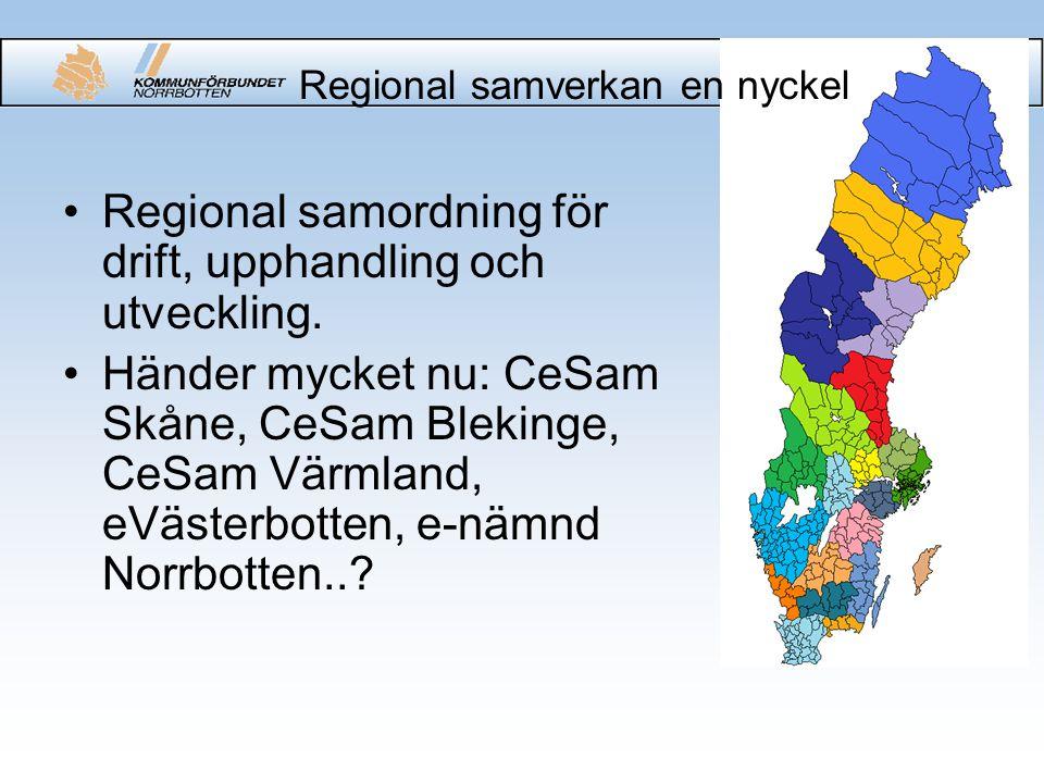 Regional samverkan en nyckel