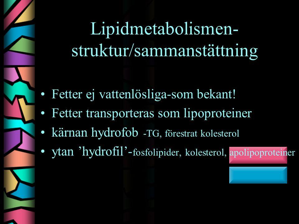 Lipidmetabolismen-struktur/sammanstättning