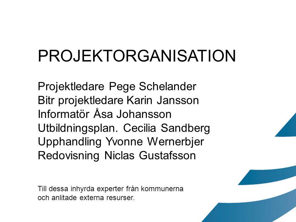 PROJEKTORGANISATION Projektledare Pege Schelander