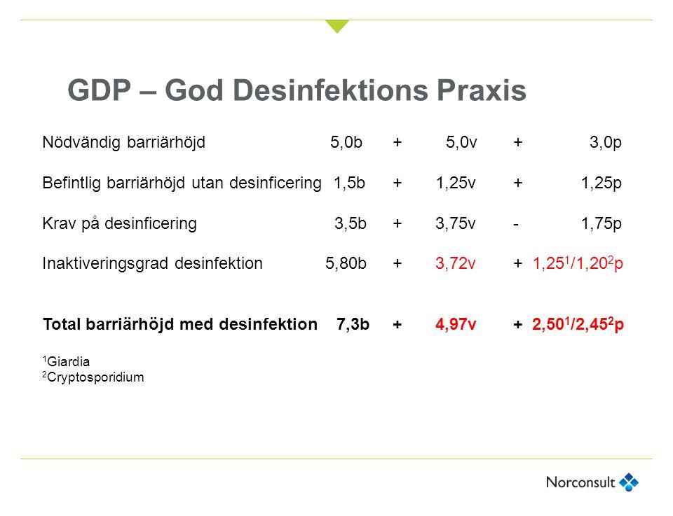 GDP – God Desinfektions Praxis