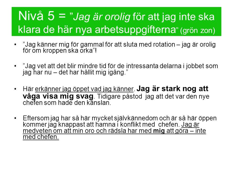 Nivå 5 = Jag är orolig för att jag inte ska klara de här nya arbetsuppgifterna (grön zon)