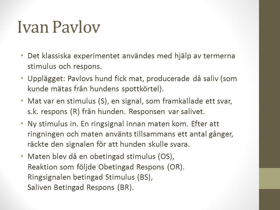Ivan Pavlov Det klassiska experimentet användes med hjälp av termerna stimulus och respons.