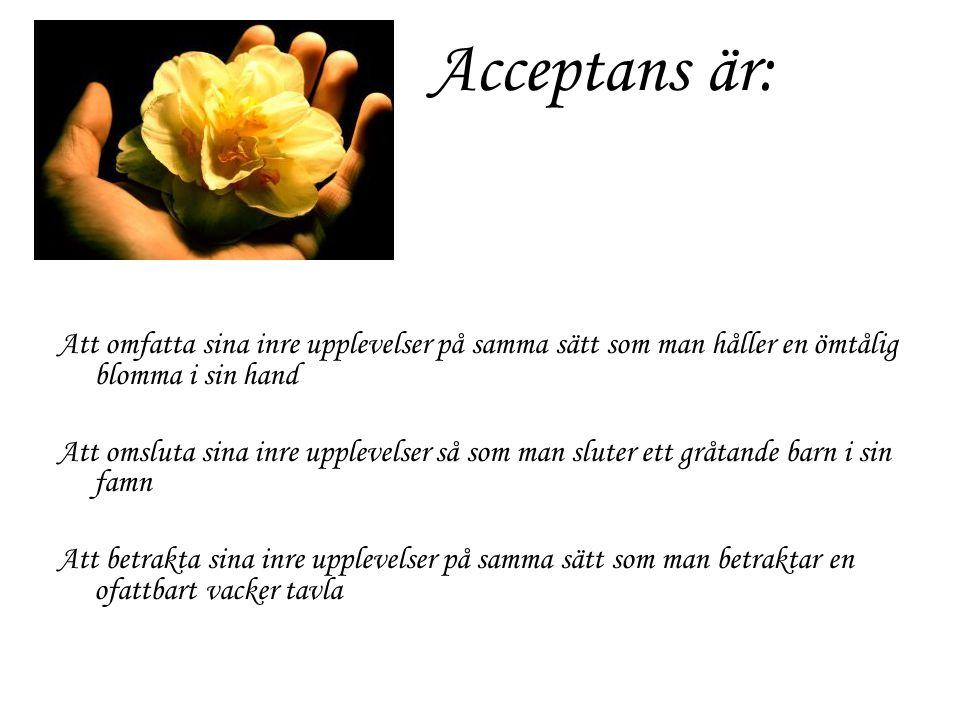 Acceptans är: Att omfatta sina inre upplevelser på samma sätt som man håller en ömtålig blomma i sin hand.