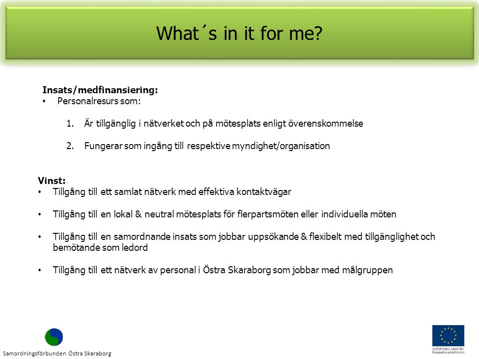 What´s in it for me Insats/medfinansiering: Personalresurs som: