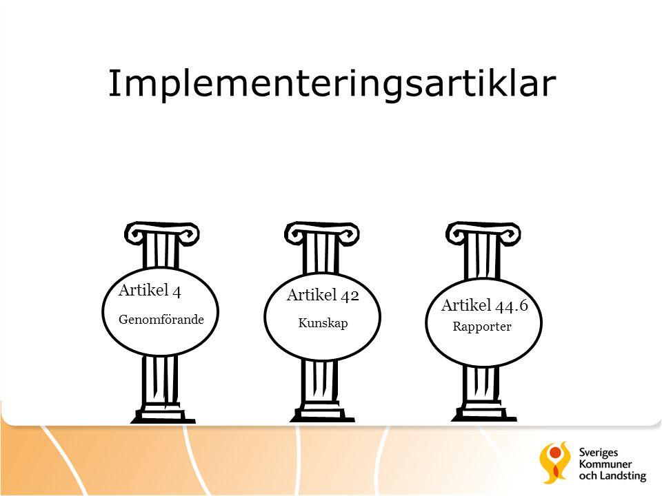 Implementeringsartiklar