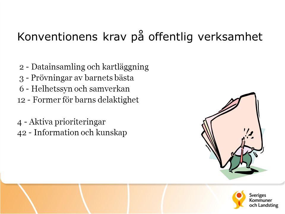 Konventionens krav på offentlig verksamhet