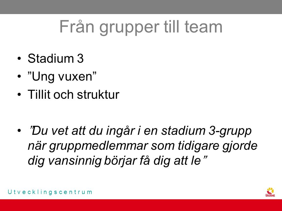 Från grupper till team Stadium 3 Ung vuxen Tillit och struktur