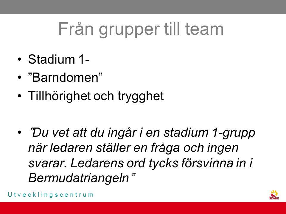 Från grupper till team Stadium 1- Barndomen