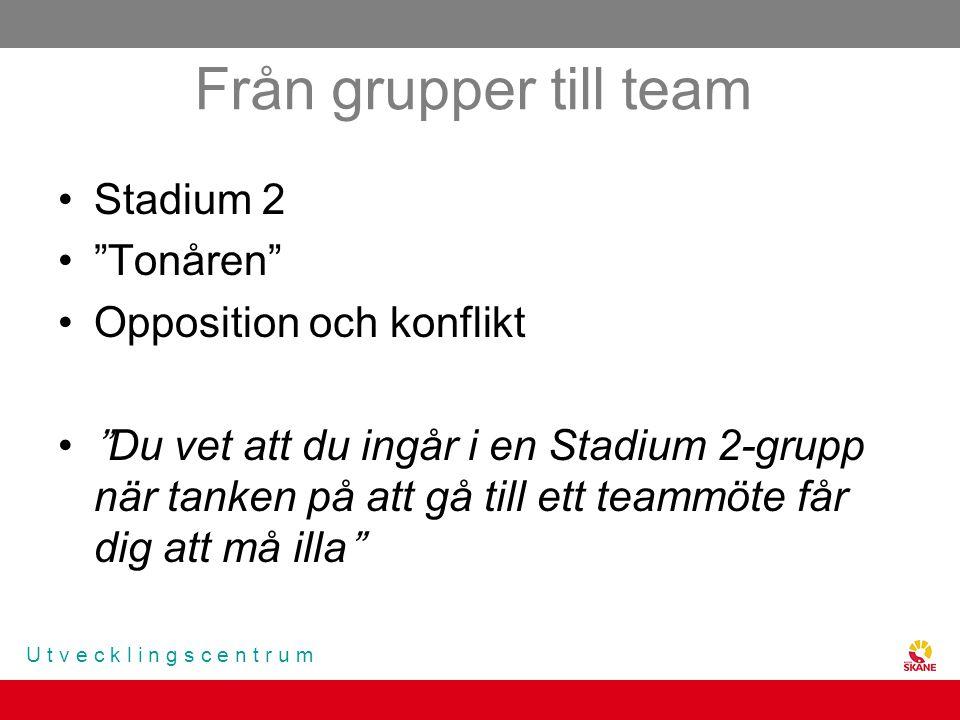 Från grupper till team Stadium 2 Tonåren Opposition och konflikt