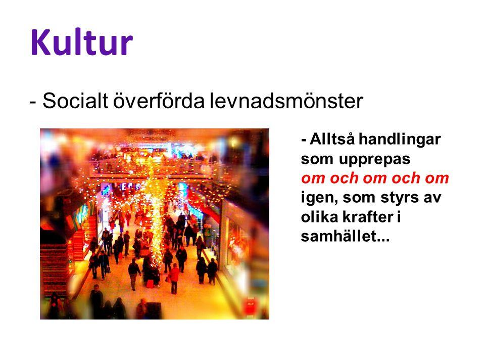 Kultur - Socialt överförda levnadsmönster