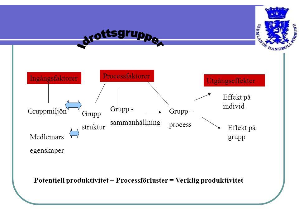 Idrottsgrupper Processfaktorer Ingångsfaktorer Utgångseffekter
