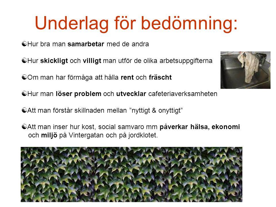 Underlag för bedömning: