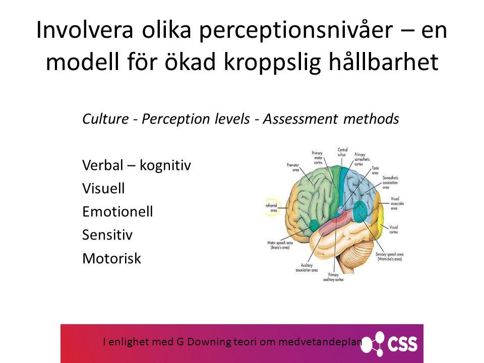 Involvera olika perceptionsnivåer – en modell för ökad kroppslig hållbarhet