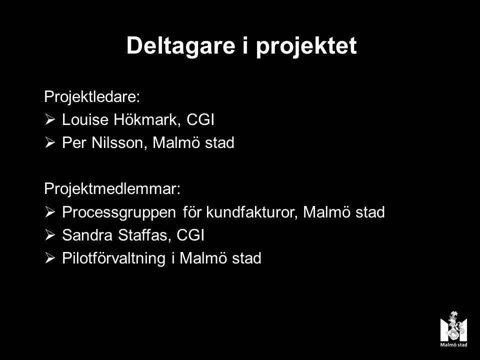 Deltagare i projektet Projektledare: Louise Hökmark, CGI