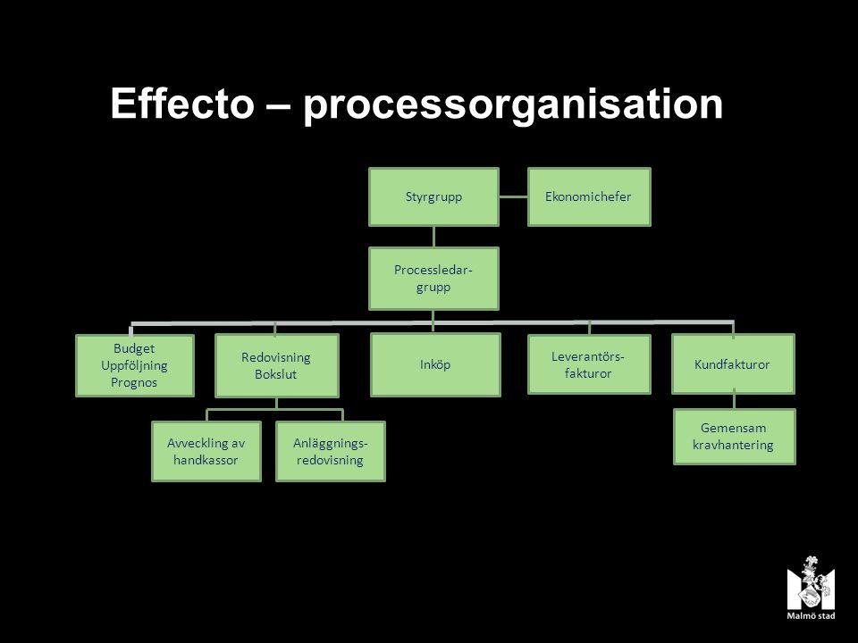 Effecto – processorganisation