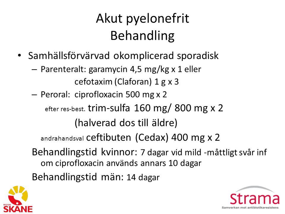 Akut pyelonefrit Behandling