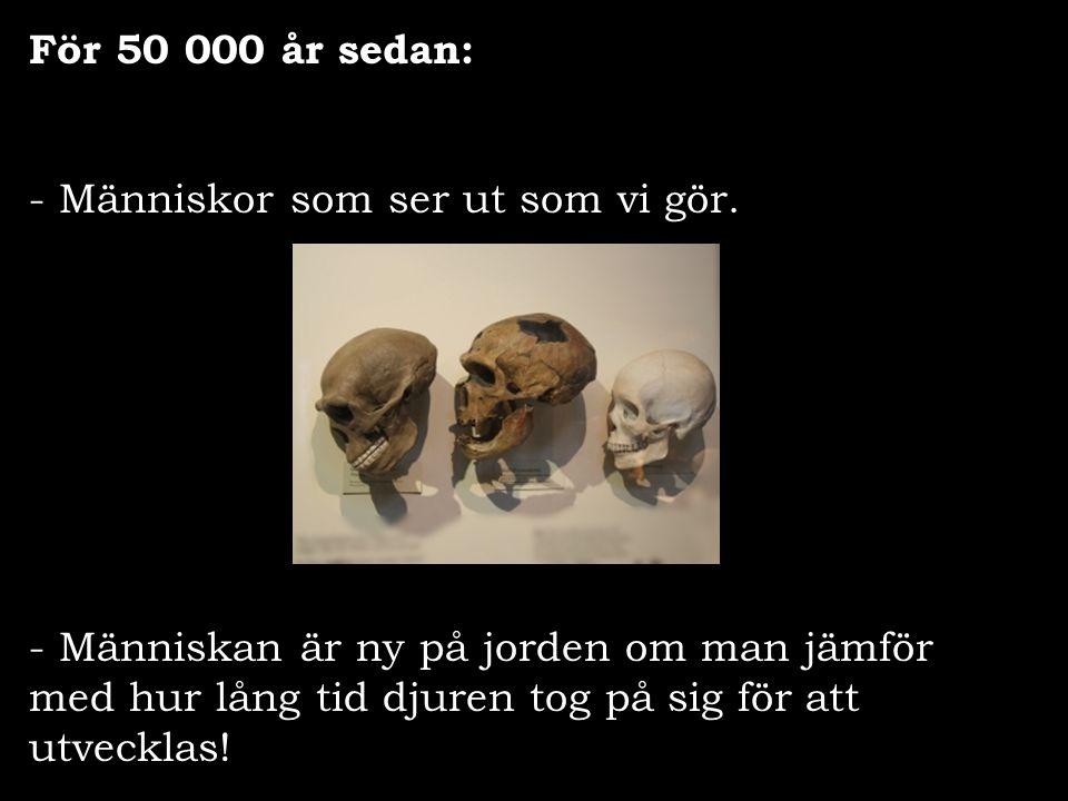 För 50 000 år sedan: Människor som ser ut som vi gör.