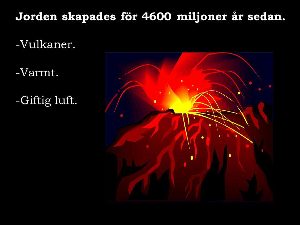 Jorden skapades för 4600 miljoner år sedan.