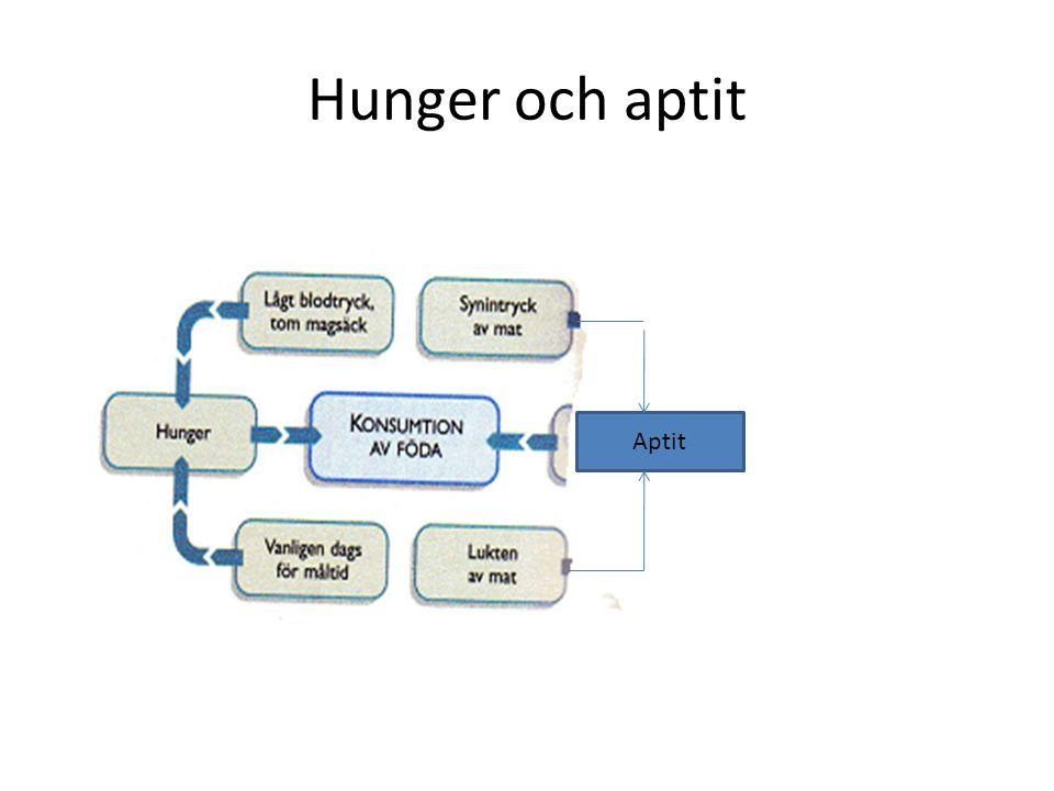Hunger och aptit Aptit
