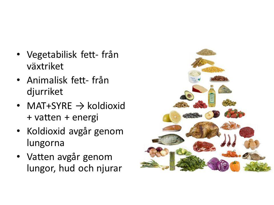 Vegetabilisk fett- från växtriket