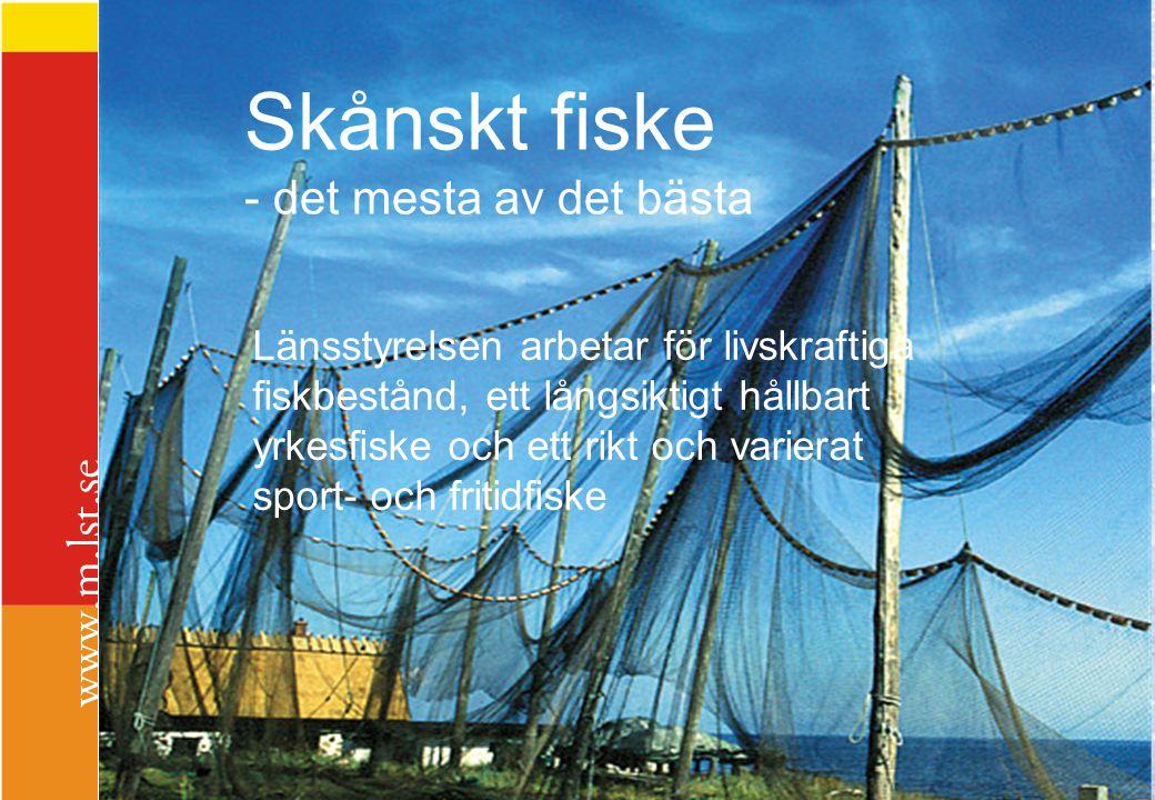 Skånskt fiske Skånskt fiske - det mesta av det bästa
