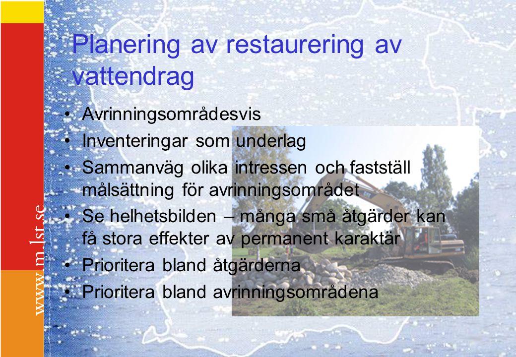 Planering av restaurering av vattendrag