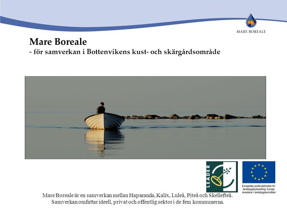 Mare Boreale - för samverkan i Bottenvikens kust- och skärgårdsområde