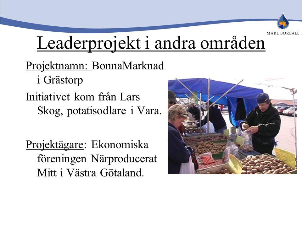 Leaderprojekt i andra områden